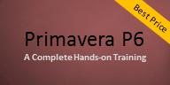 Primavera P6 Online Course 29 Jan – India